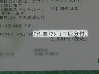 20190408b.JPG